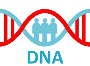 DNA checker